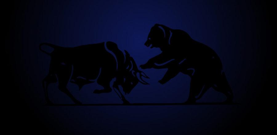 Bear Bull 2